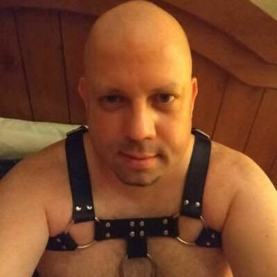bear gay porn tube