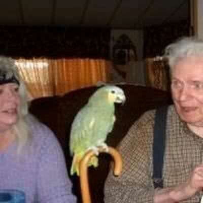preciousbird