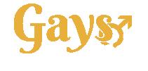 Gays Argentina